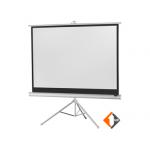 Купить Экран для проектора